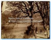 1885-McNabb Collection