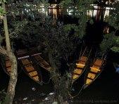 Boats in Naini Laks in Night