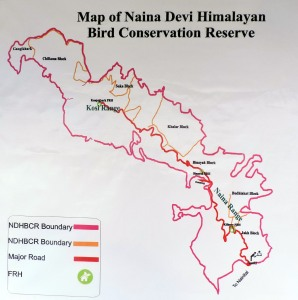 NDHBCR