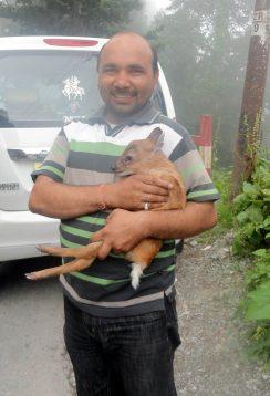 with kaankad